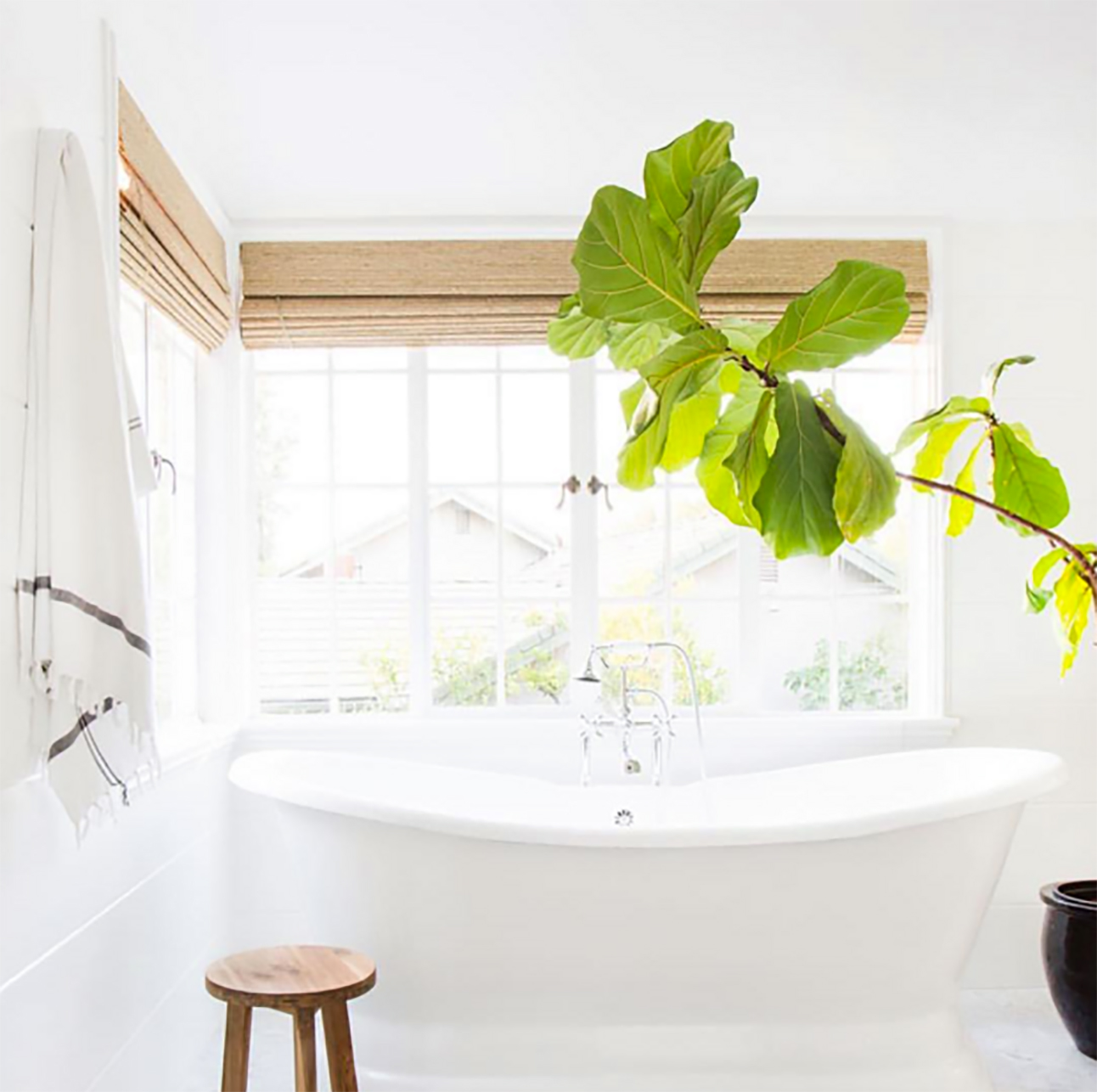 9 Refreshing Ways To Decorate With House Plants